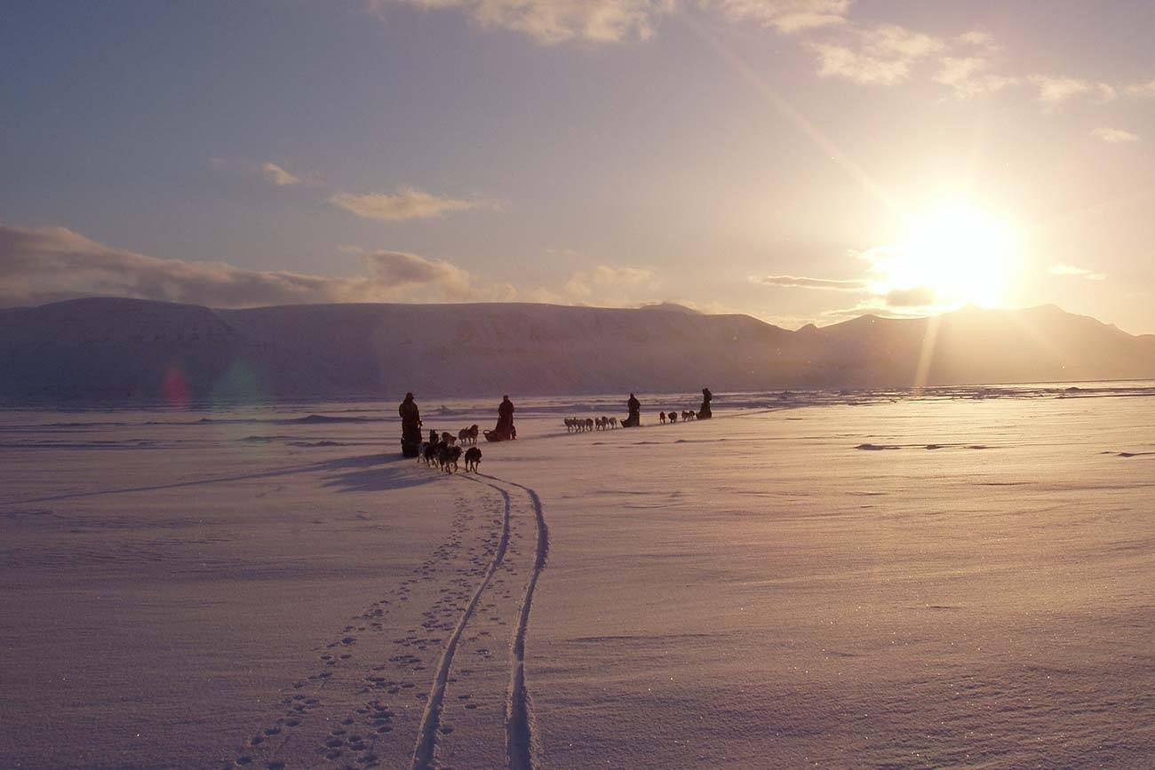 3 days dog sledding adventure | Beito Husky Tours