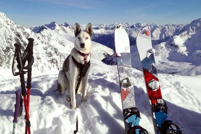* Mush & Ski *