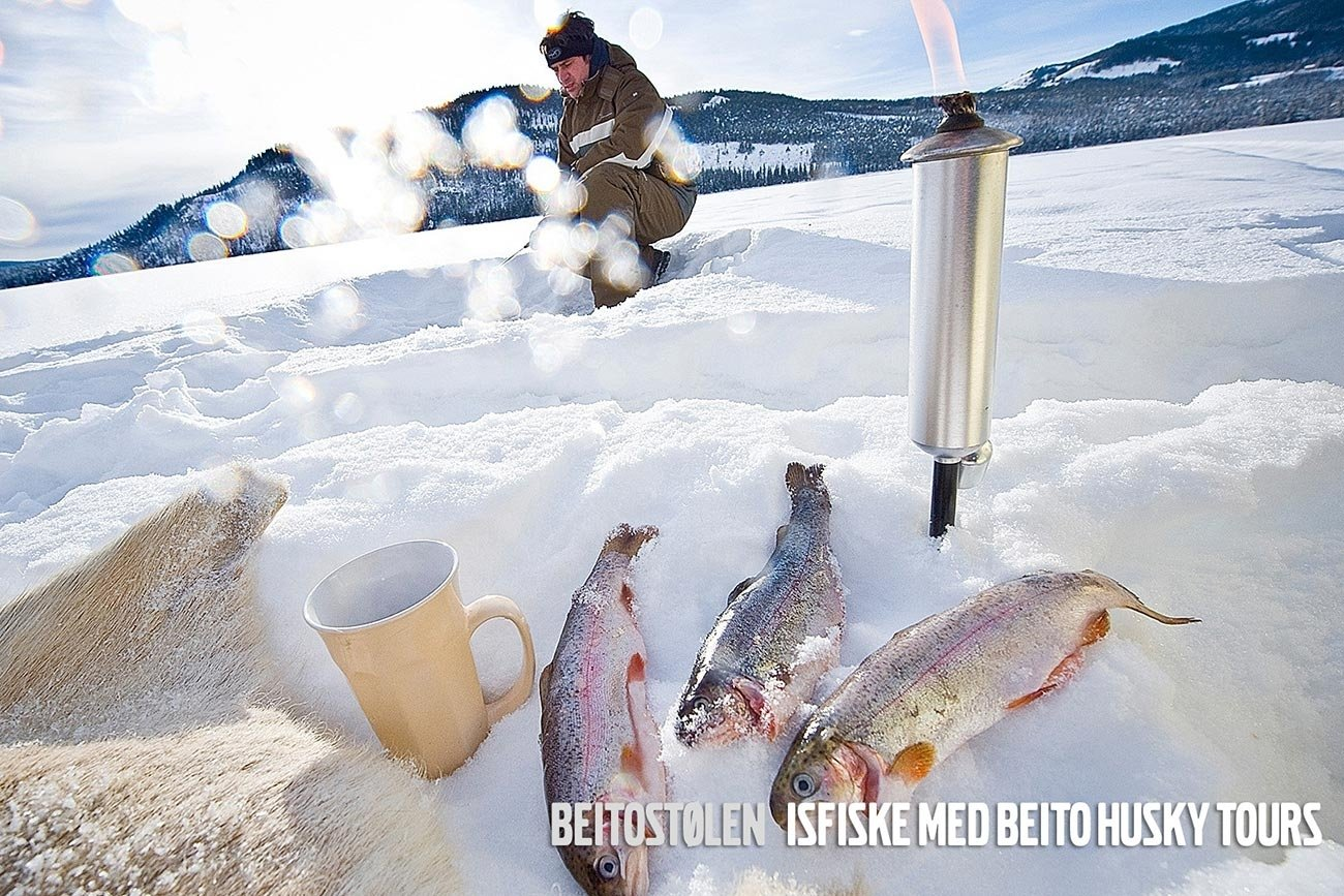 Snowshoeing and ice fishing in Beitostølen, Norway | Beito Husky Tours