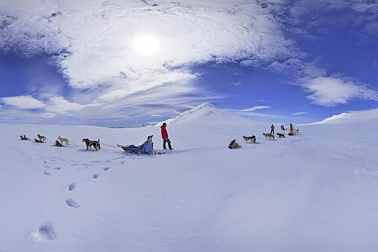 One of the best areas for dog sledding in Norway | Beito Husky tours