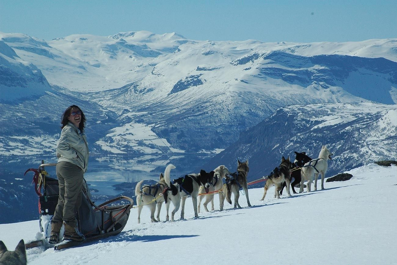Dog sledding at the feet of the Jotunheimen National Park | Beito Husky Tours