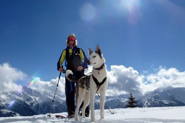Husky Team Assisted Back Country Skitour