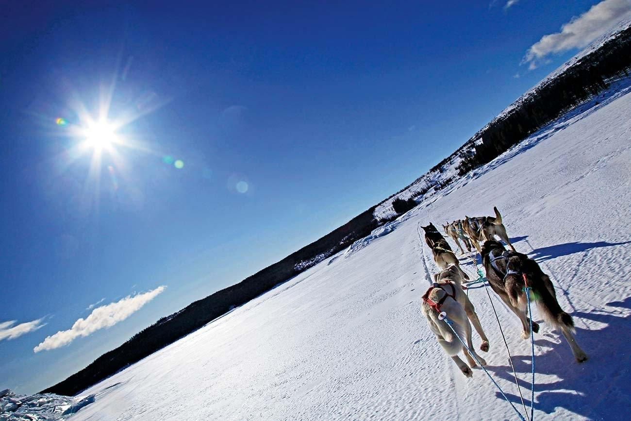 Discover Langsua, the newest National Park in Norway from a dog sled | Beito Husky Tours