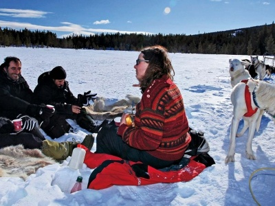 Who can join to a dog sledding tour?